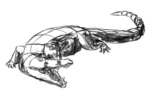 how to draw crocodile step by step 7