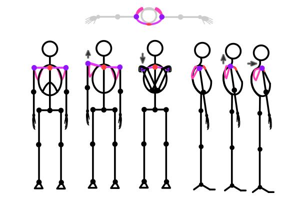 how to draw stick figure stickman tutorial torso 4