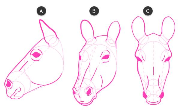 how to draw zebra head 4