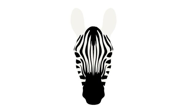 how to draw zebra pattern stripes 5