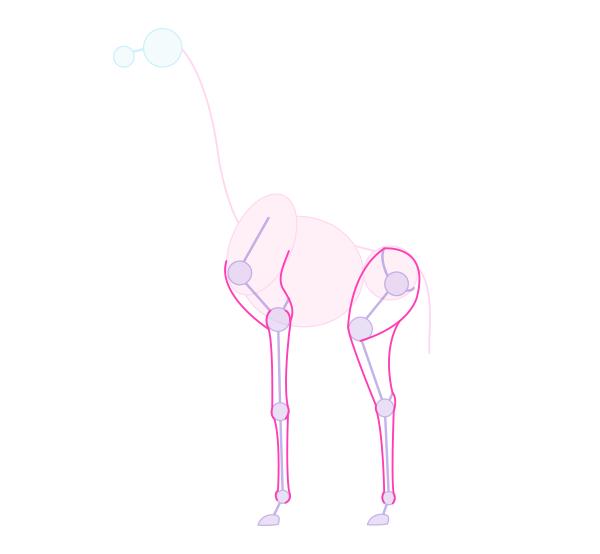 how to draw skeleton giraffe pose 3