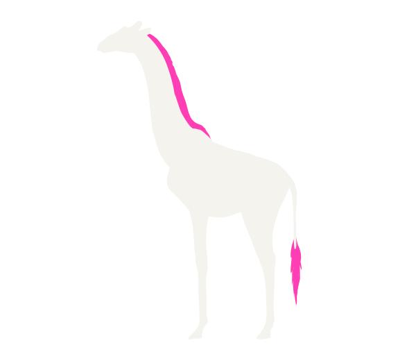how to draw giraffe mane tail