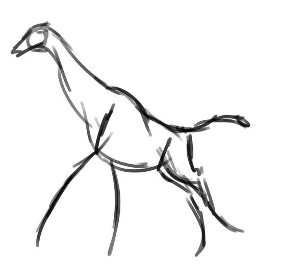 how to draw zebra giraffe