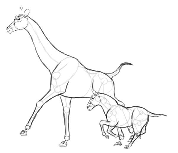 how to draw zebra giraffe 6
