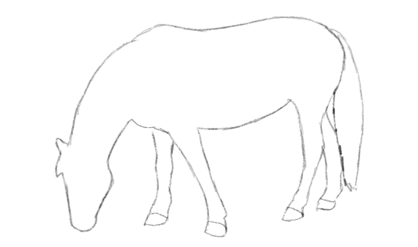 how to draw horse outline lines