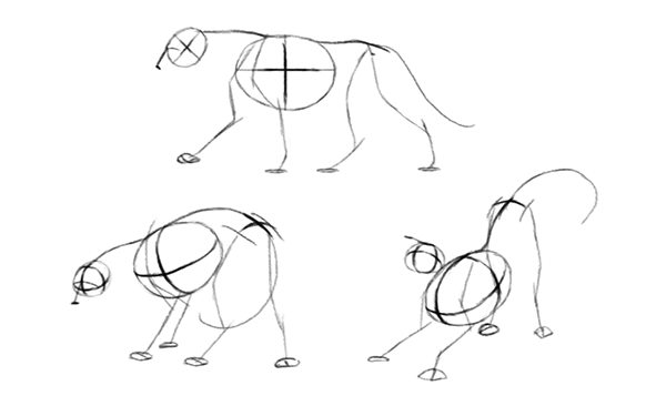 how to draw animal depth perspective define pose