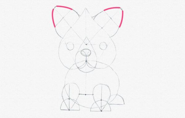 fox ears done