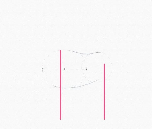 measure horse legs draw