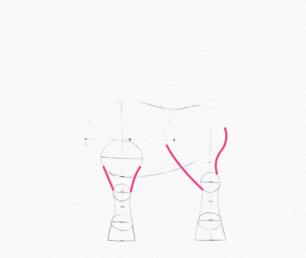 pony drawing upper leg
