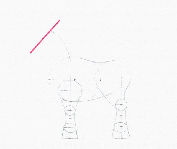 draw pony head line