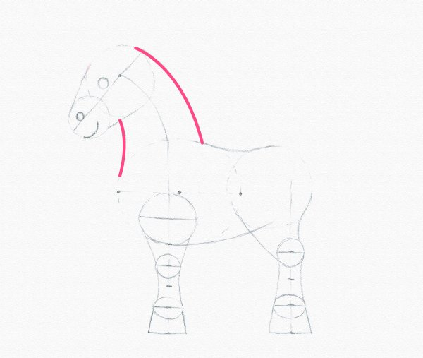 draw pony neck lines complete