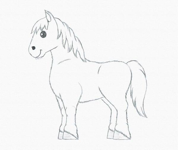 draw pony details hair beginner