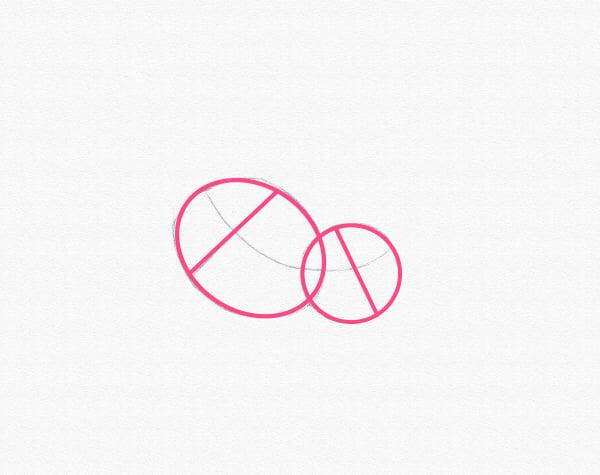 draw a pony body chest hips