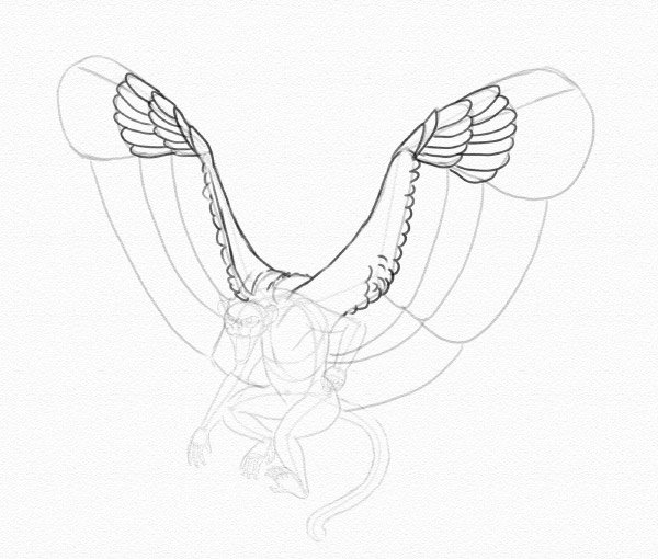 draw wings feathers top