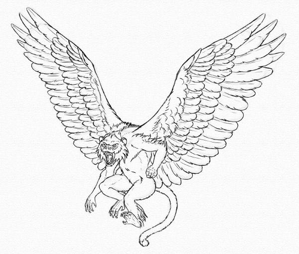 draw winged monkey sketch