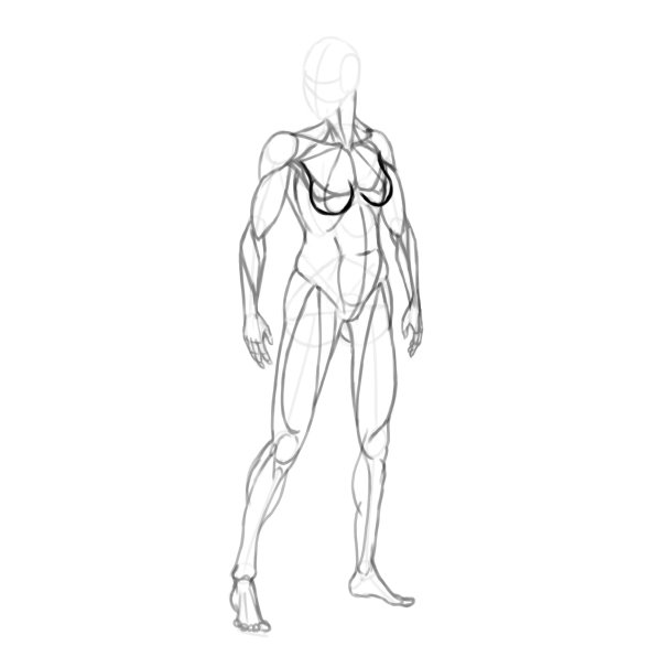 draw a realistic female warrior breasts