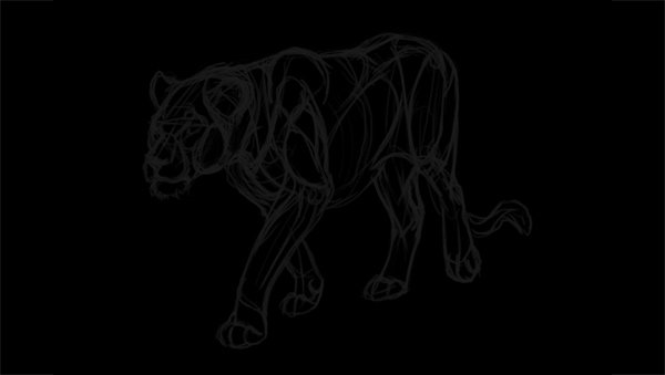 drawing lion transparent lines