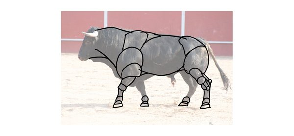 how to draw bull neck