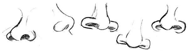 Study of Samuel L Jacksons nose