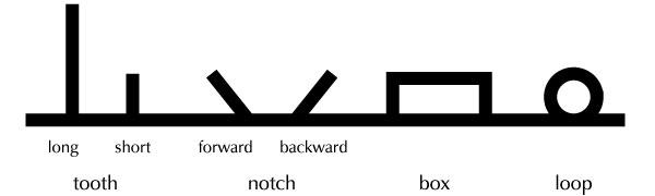 Basic body shapes