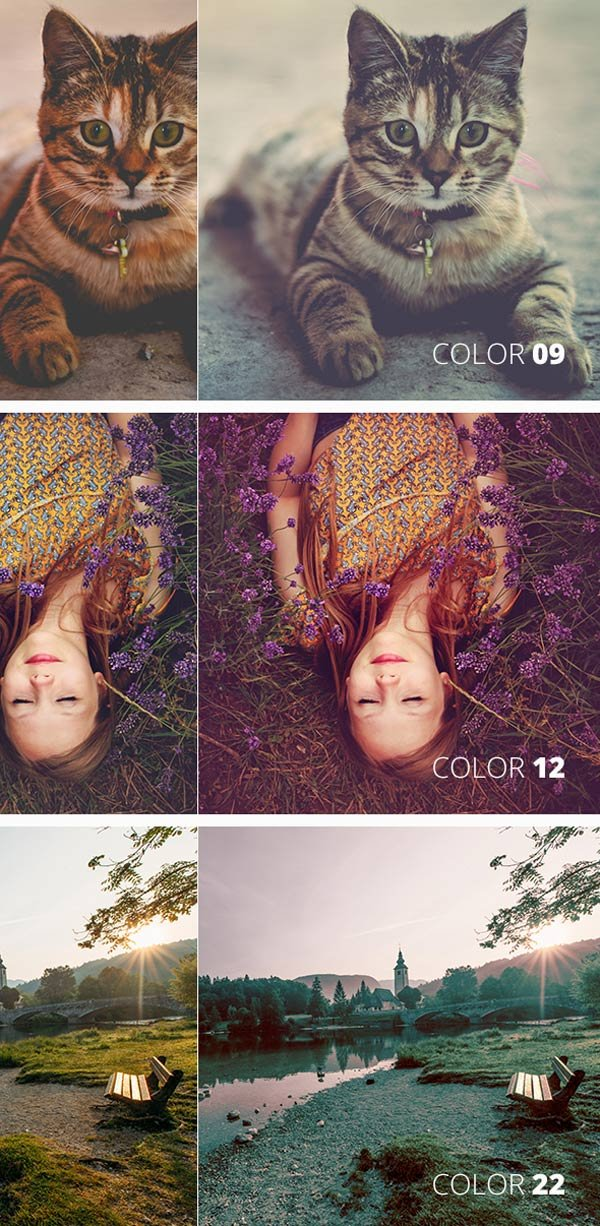 color filter template