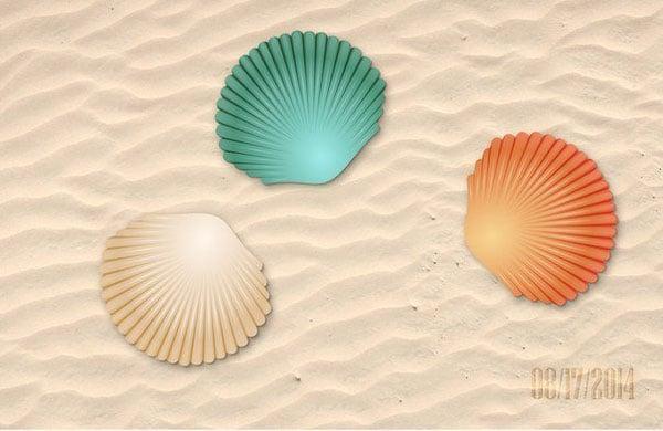 Sonnetmcrs seashell illustration