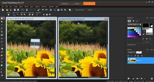 PaintShop Pro interface