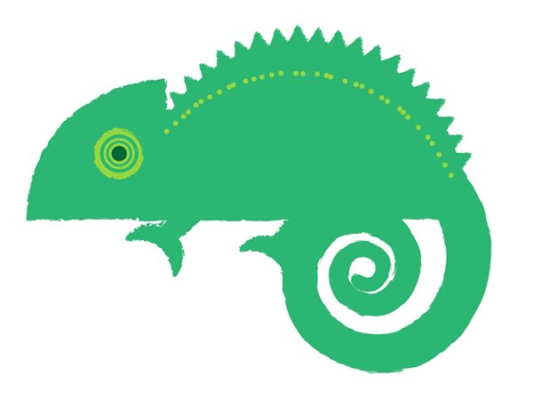 Add shapes and textures to your chameleon design