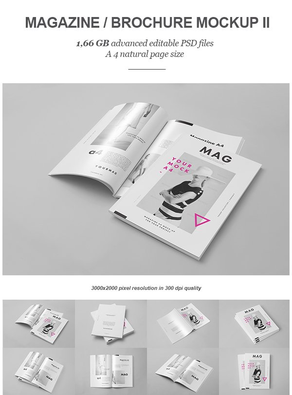 Magazine  Brochure Mock-up II