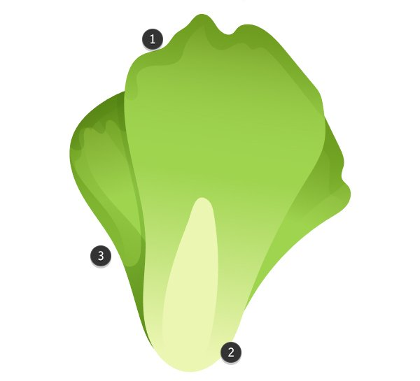 Use gradient shapes in order to render the lettuce head