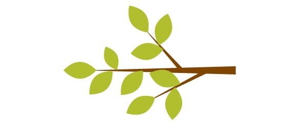 placing the leaves on the branch