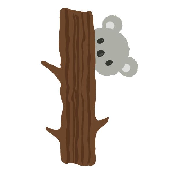placing the koalas head