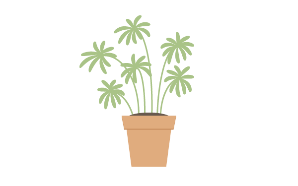 creating the leaves of the first plant