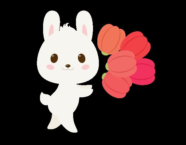 placing tulips close to rabbit
