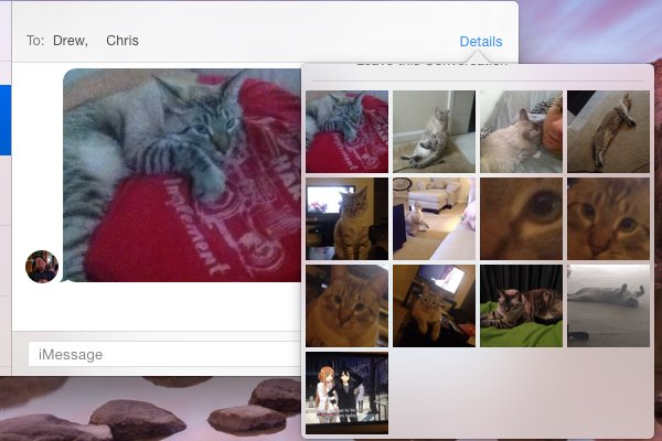 Browse all images sent and received in a conversation