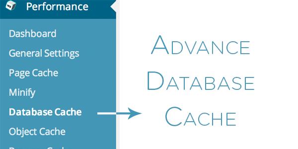Advance Database Cache