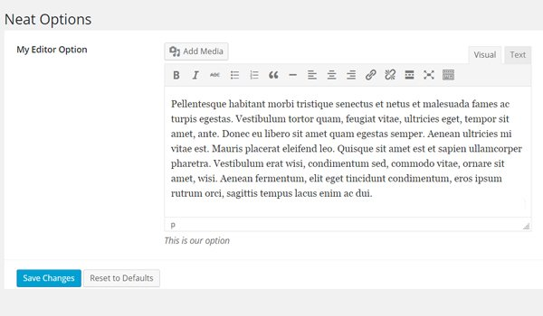 The Editor with Dummy Text