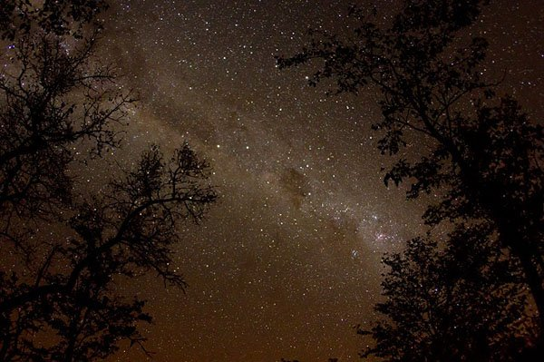 Night Sky in Mozambique