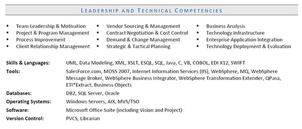 Functional resume skills for IT director