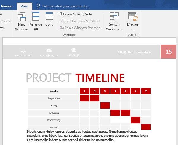 A customized proposal timeline