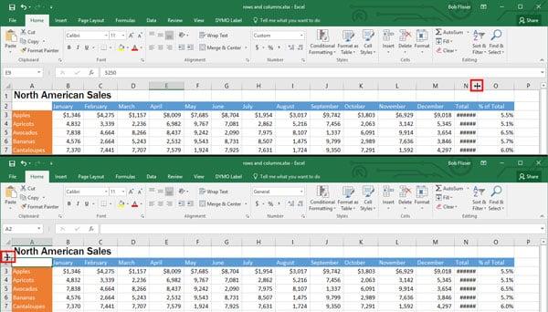 Windows File Explorer column width row height