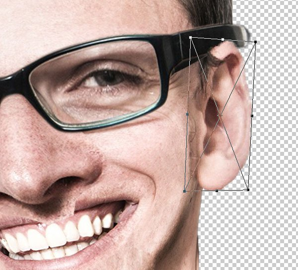 Increase the ear layer too