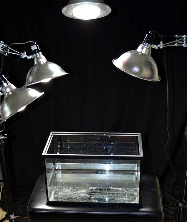 Add lights over an aquarium of water