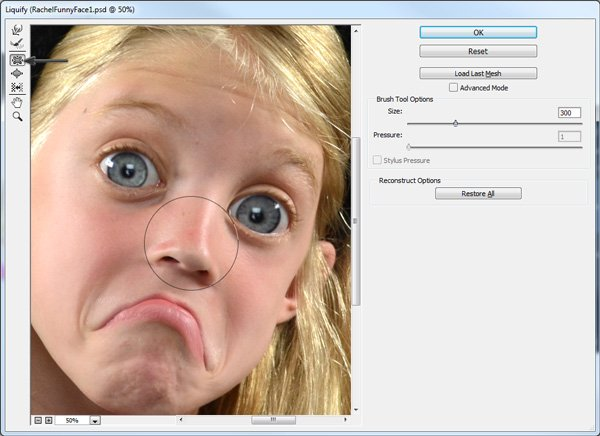 Use the Pucker Tool to shrink the nose