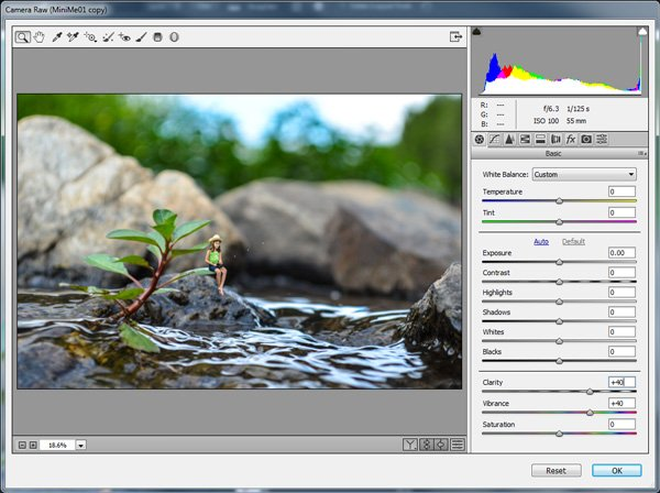 Camera Raw Filter to increase Clarity and Vibrance