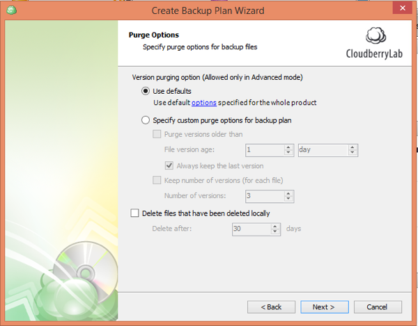CloudBerry Backup Wizard Purge Options