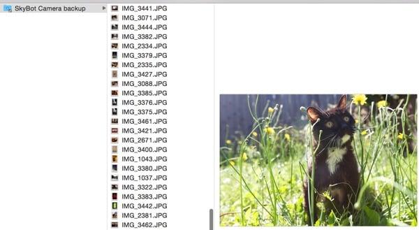 BitTorrent Sync Camera Backup