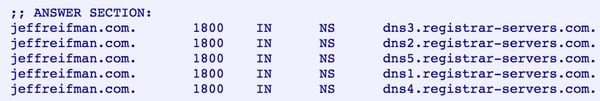 Example Name Server Records NS for Jeff Reifmans Website
