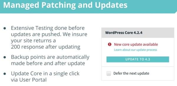 WP Engine Managed Updates