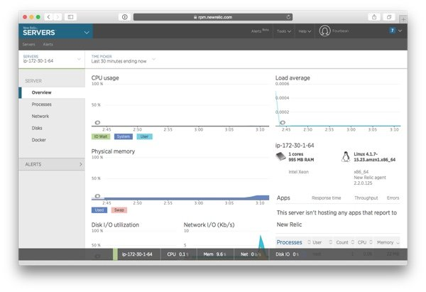 The New Relic Servers overview page